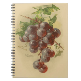Vintage grapes notebooks
