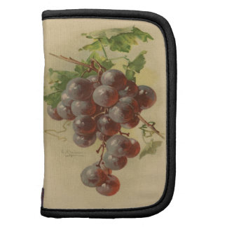Vintage grapes folio planners