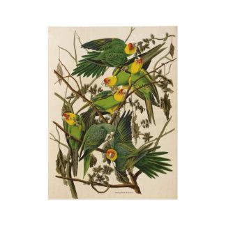 Vintage Green Parakeets Parrots Wood Poster