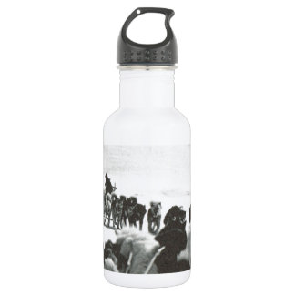 Vintage Greenland, arctic dog teams 532 Ml Water Bottle