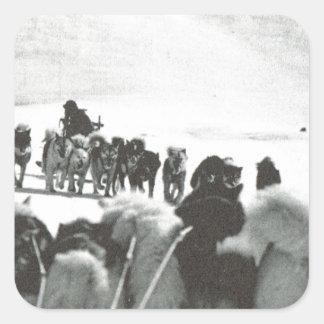 Vintage Greenland, arctic dog teams Square Sticker