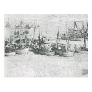 Vintage Greenland, Arctic fishing fleet Postcard