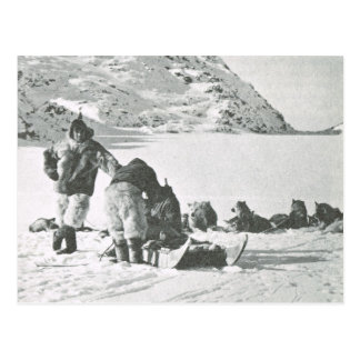 Vintage Greenland, dog team and drivers Postcard