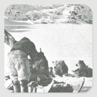 Vintage Greenland, out with the dogs Square Sticker