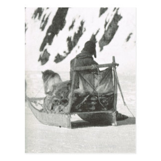 Vintage Greenland, Travelling by sledge Postcard