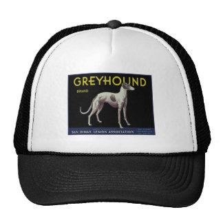 Vintage Greyhound Lemon Label Circa 1920 Cap