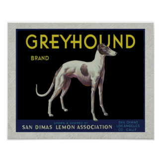 Vintage Greyhound Lemon Label Circa 1920 Posters
