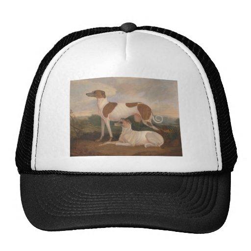 Vintage Greyhounds Trucker Hat