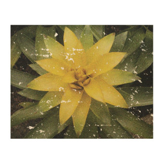 Vintage grungy faded look yellow flower photo wood print