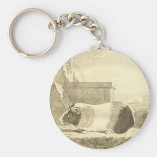 Vintage Guinea Pig Key Ring