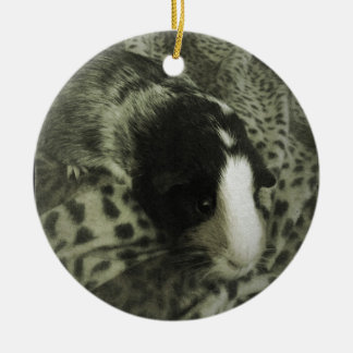 Vintage guinea pig photograph christmas ornament