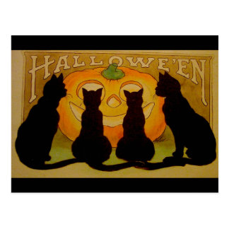 Vintage Halloween Black Cats and Jack O Lantern Post Cards