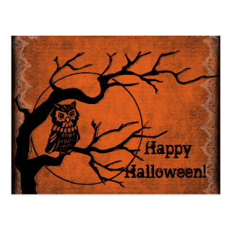 Vintage Happy Halloween with Owl Postcard