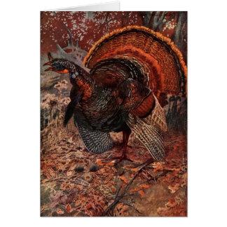 Vintage Happy Thanksgiving Turkey Card
