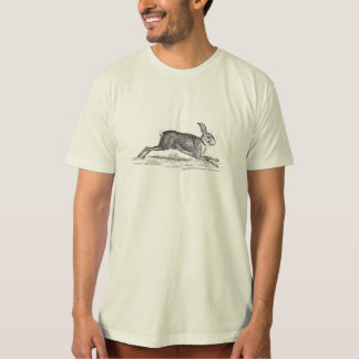 Vintage Hare Bunny Rabbit 1800s Illustration T-Shirt