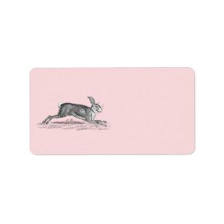 Vintage Hare Bunny Rabbit Illustration -Rabbits Label
