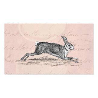 Vintage Hare Bunny Rabbit Illustration -Rabbits Pack Of Standard Business Cards
