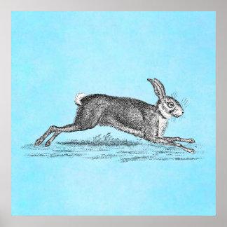 Vintage Hare Bunny Rabbit Illustration -Rabbits Poster