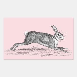 Vintage Hare Bunny Rabbit Illustration -Rabbits Stickers