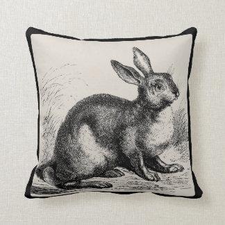 Vintage Hare or Jackrabbit - Pick Your Color - Cushion