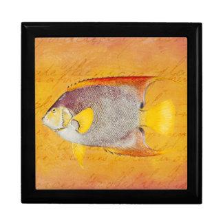 Vintage Hawaiian Angel Fish - Antique Hawaii Large Square Gift Box
