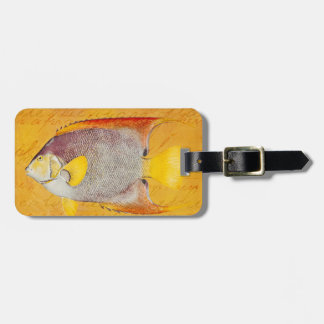 Vintage Hawaiian Angel Fish - Antique Hawaii Luggage Tag