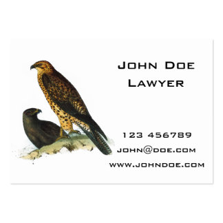 Vintage Hawks Illustration Pack Of Chubby Business Cards