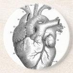 Vintage Heart Anatomy | Customisable Drink Coasters
