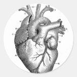 Vintage Heart Anatomy | Customisable Round Sticker