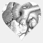 Vintage Heart Anatomy | Customisable Heart Stickers