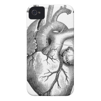 Vintage Heart Anatomy | Customizable Case-Mate iPhone 4 Case