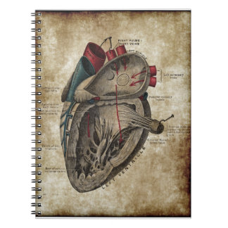 Vintage Heart Diagram Notebook