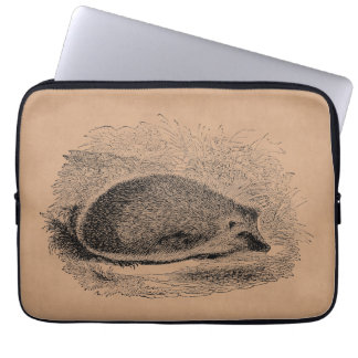 Vintage Hedgehog 1800s Hedgehogs Illustration Laptop Sleeve