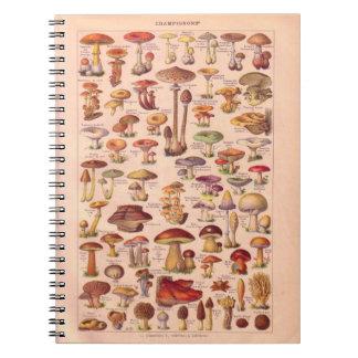 Vintage historic,  Mushrooms Notebooks