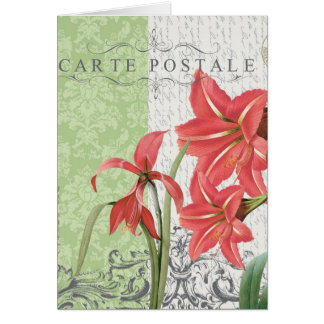Vintage Holiday...amaryllis notecard