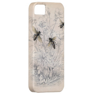 Vintage Honey Bee Art Print Case For The iPhone 5