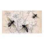 Vintage Honey Bee Art Print Pack Of Standard Business Cards