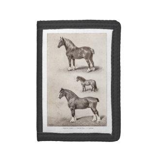 Vintage Horse Clydesdale Shetland Belgian Horses Trifold Wallet