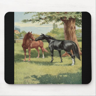 Vintage Horse Mare Stallion Equestrian Mouse Pads