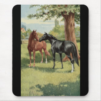 Vintage Horse Mare Stallion Equestrian Mouse Pad
