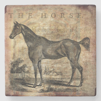Vintage Horse Thoroughbred and Arabian Horses Stone Beverage Coaster