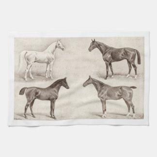 Vintage Horses - Horse and Pony Templates  horse Tea Towel