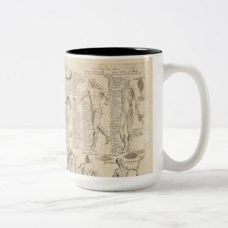 Vintage human anatomy mug