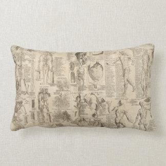 Vintage human anatomy pillow