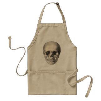 Vintage Human Anatomy Skull, Halloween Skeleton Standard Apron