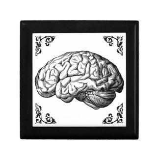 Vintage Human Brain Gothic Jewelry Box