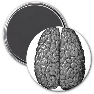 Vintage Human Brain Illustration 7.5 Cm Round Magnet