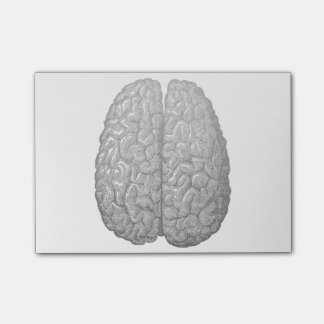 Vintage Human Brain Illustration Post-it Notes