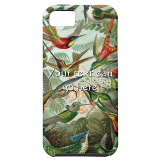 Vintage Hummingbirds iPhone 5 Cases