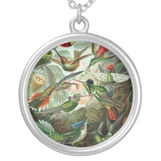 Vintage hummingbirds scientific illustration silver plated necklace